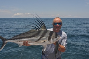 Rooster fish Panama