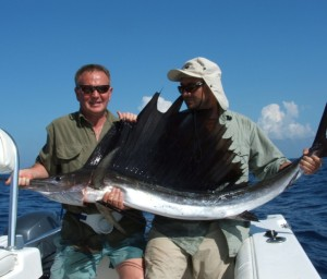 sailfish-1024x875