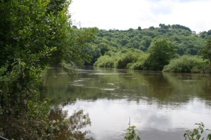 A flood on the Wye in June