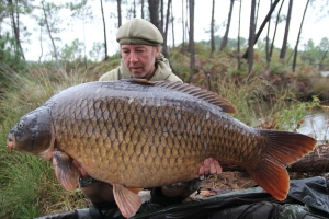 The perfect C 32.8kg