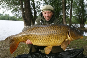 A recently caught 104cm Belgian fish