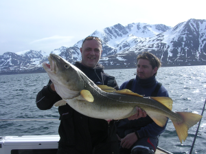 30lb cod from Norway