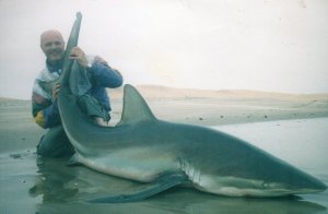 250lb bronze whaler from Namibia