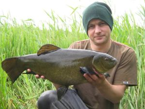 7lb 10oz tench