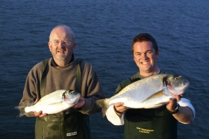 Rob with his record breaking gilthead bream and a specimen for Chris