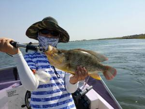 Humpback largemouth which I caught on the Okavango River, Namibia
