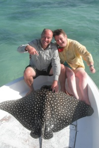 It took Christine 55 mins to land this 200lb spotted eagle ray in Cuba and was sore for a week after!