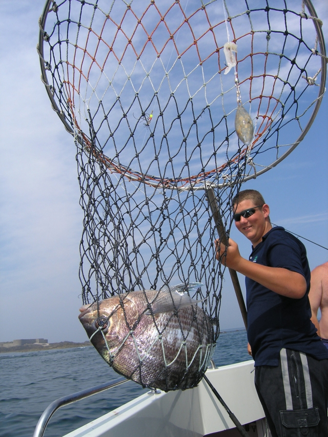 Black bream in the net onboard Sundance with Roger Bayzand