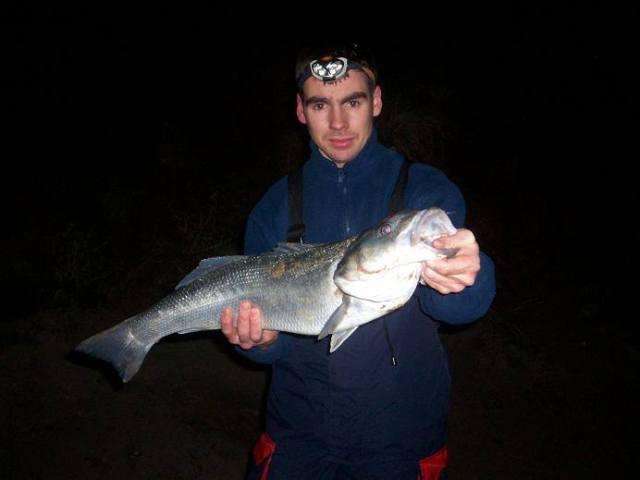 A bait caught bass