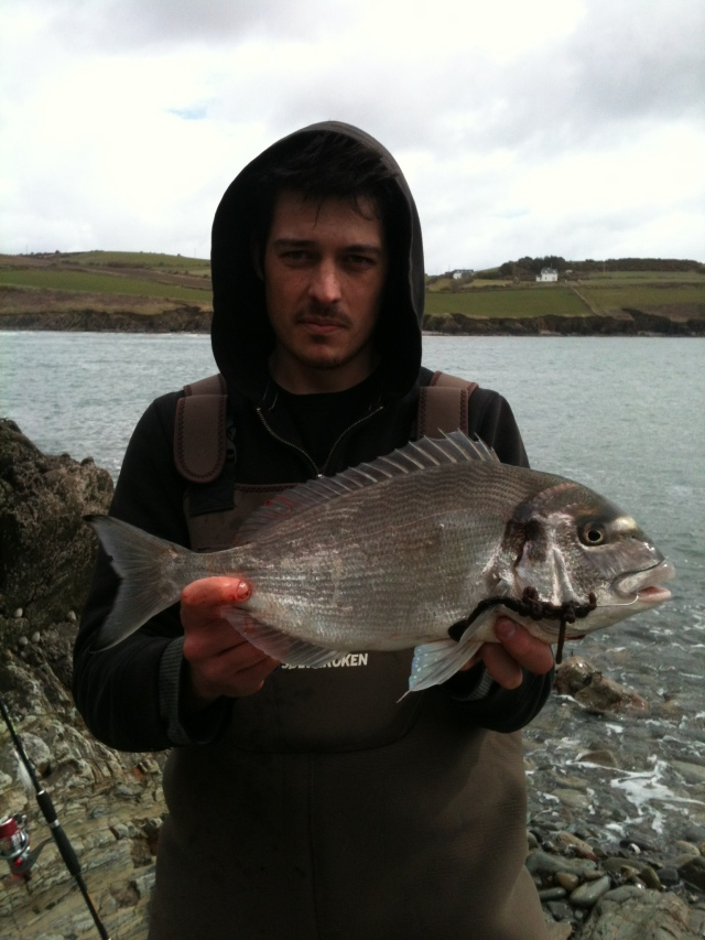 Bream from the beach