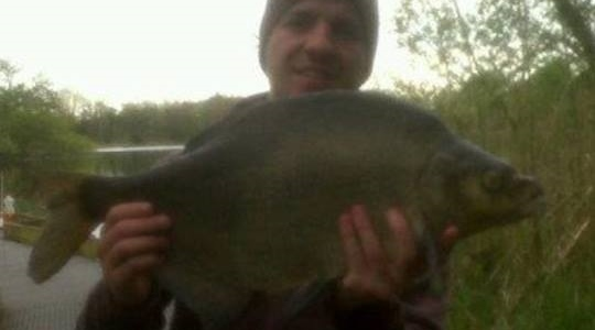 Not a great quality picture but a great quality bream!