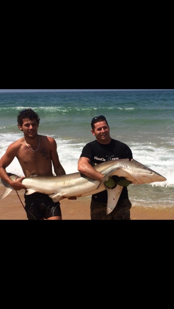 Bronze whaler fpr the guys