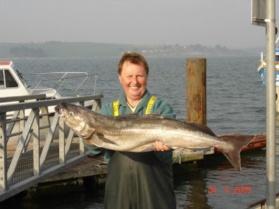 Tony and a huge coalie caught off Cork