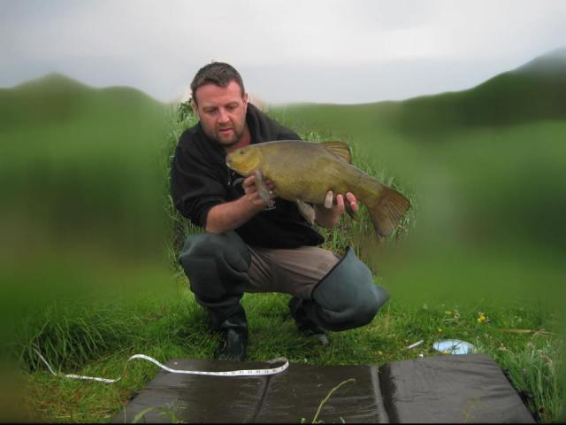 Tench 7lb 4oz