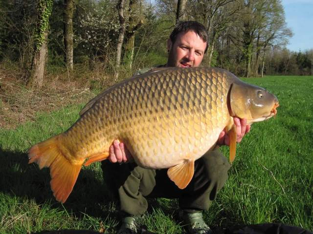 Rory with a fabulous French common
