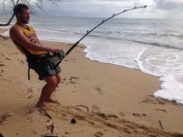 Shore caught tiger shark max muggeridge ireland for Shark fishing from shore
