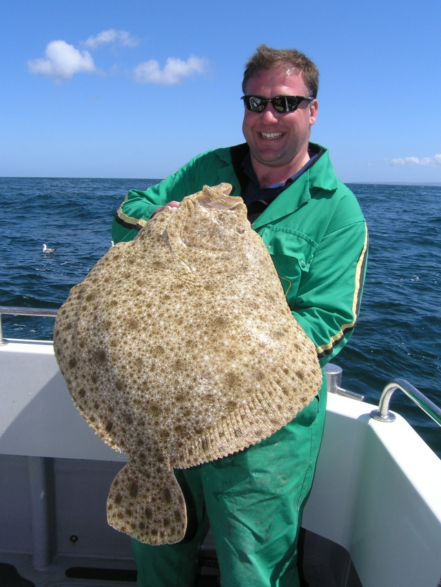 another big turbot comes aboard