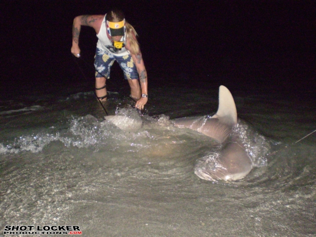 Brooks brings in another shark