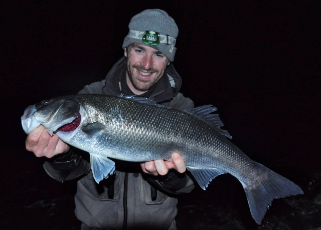 During flat calm clear water conditions rock marks become far more productive under the cover of darkness. This fish was caught on a weightless soft plastic fished slowly over some super shallow rough ground.