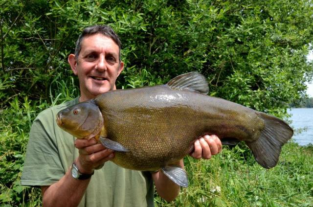 At 14lb 13oz a true monster of a tench